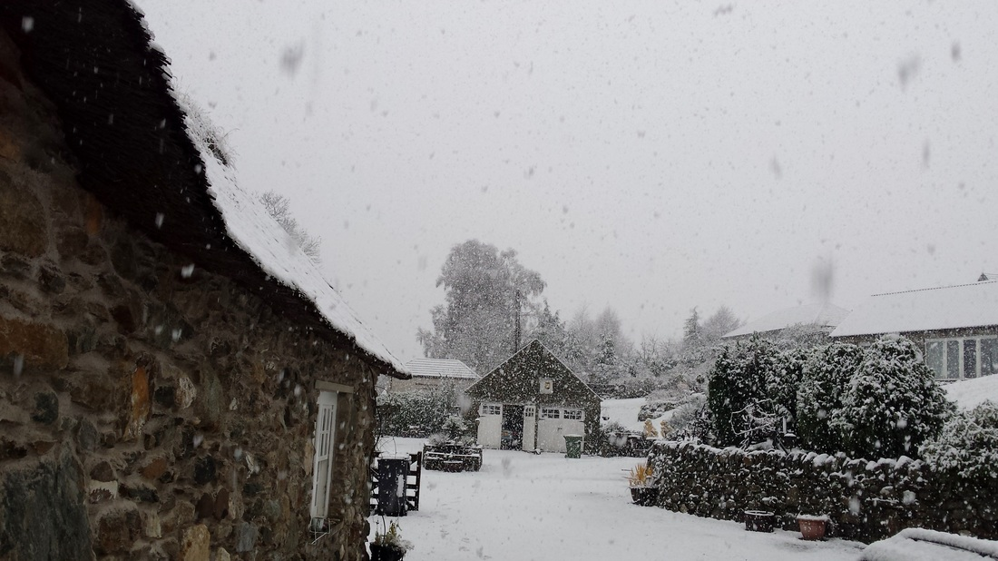 Snow falling at Briar Cottage Lochearnhead