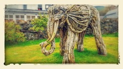 Airliephant at Airlie House ice cream parlour Strathyre