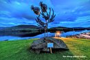 Thistle Sculpture -Blawn Wi The Wind by Kev Paxton, photo by Davie Murray @Canniejannie