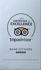 TripAdvisor Certificate of Excellence 2016 winner 5 out of 5 bubble rating