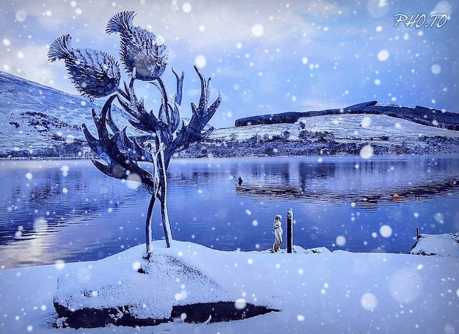 Winter wonderland at Briar Cottages on Loch Earn